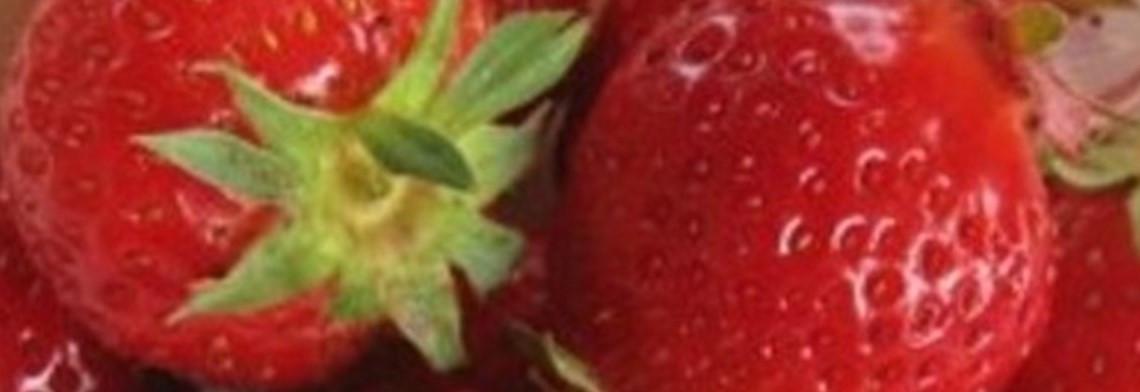 Parfumöl Erdbeere
