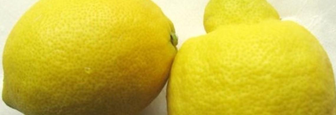 Zitronenöl naturrein