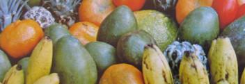 Parfumöl Fruity Wonder