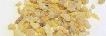 Weihrauchöl (Olibanumöl) naturrein
