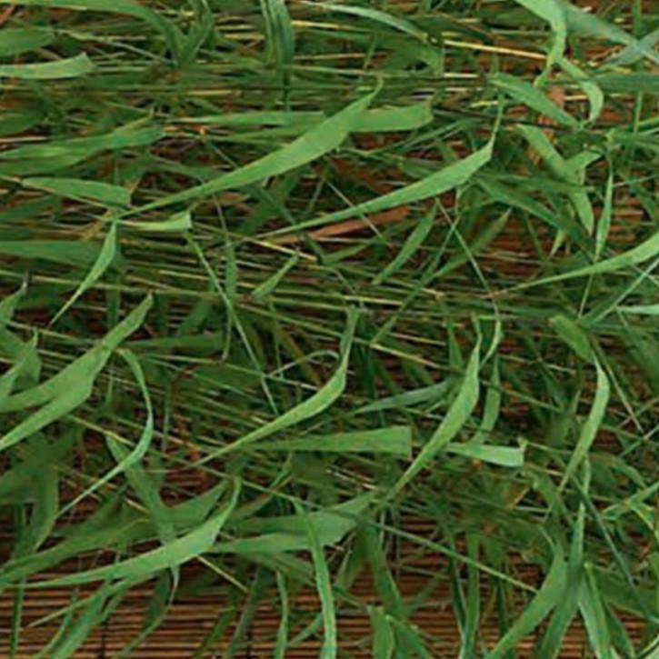 Palmarosaöl, naturidentisch    10ml