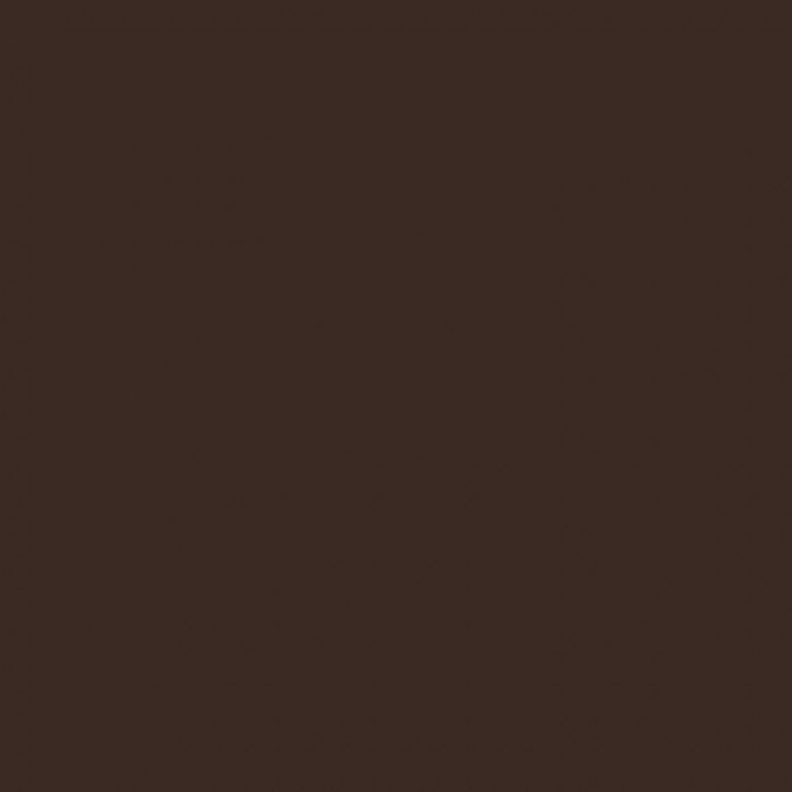Eisenoxid dunkelbraun    25g