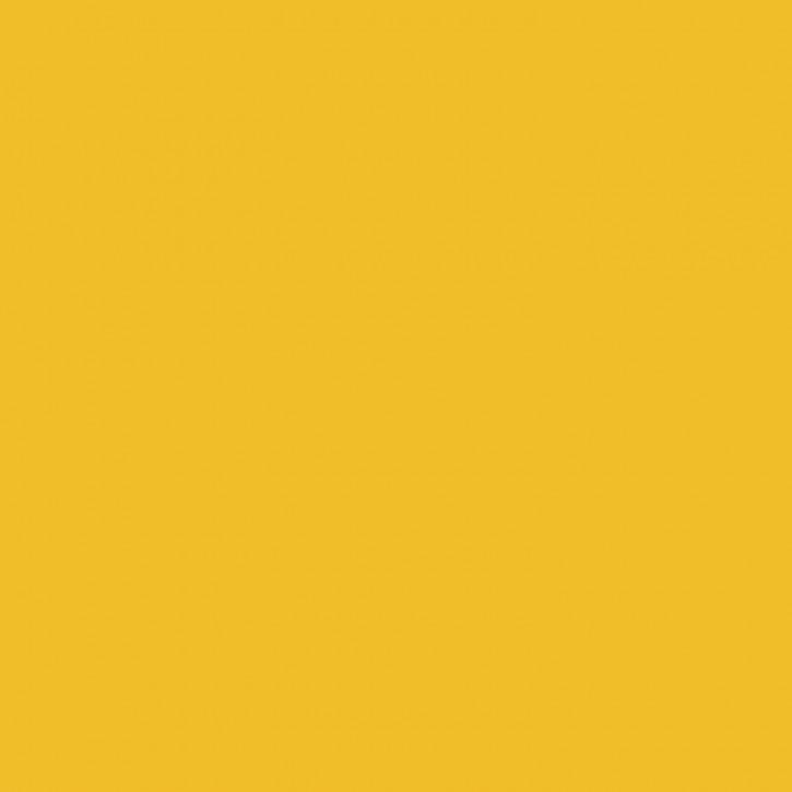 Eisenoxid gelb    100g
