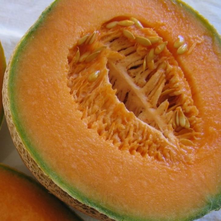 Parfumöl Honeydew Melon N    1Liter