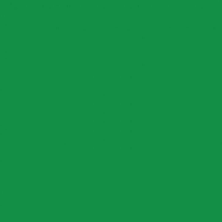 Oxid grün   100g