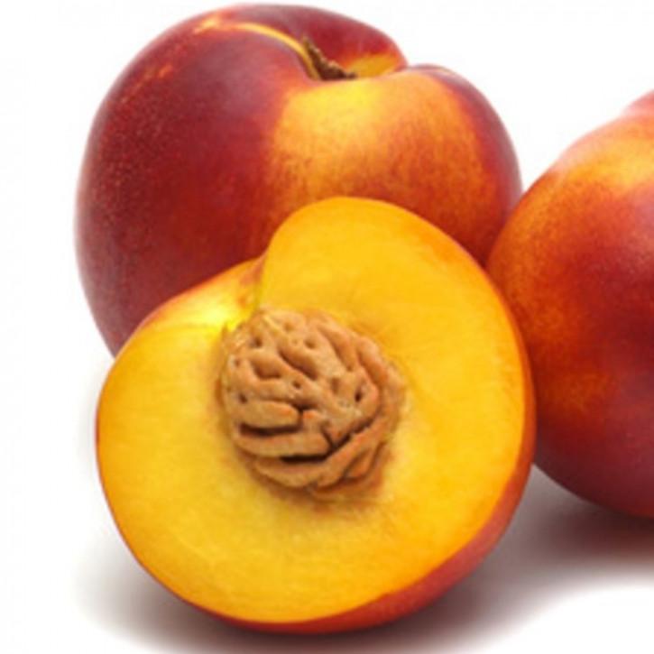 Pfirsichkernöl raffiniert    250ml