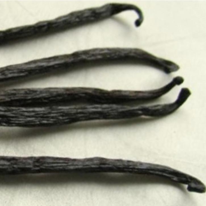 Parfümöl Vanilla (Vanille)     10ml