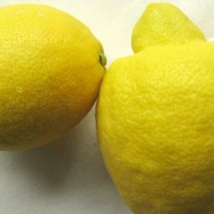 Zitronenöl naturrein  100ml