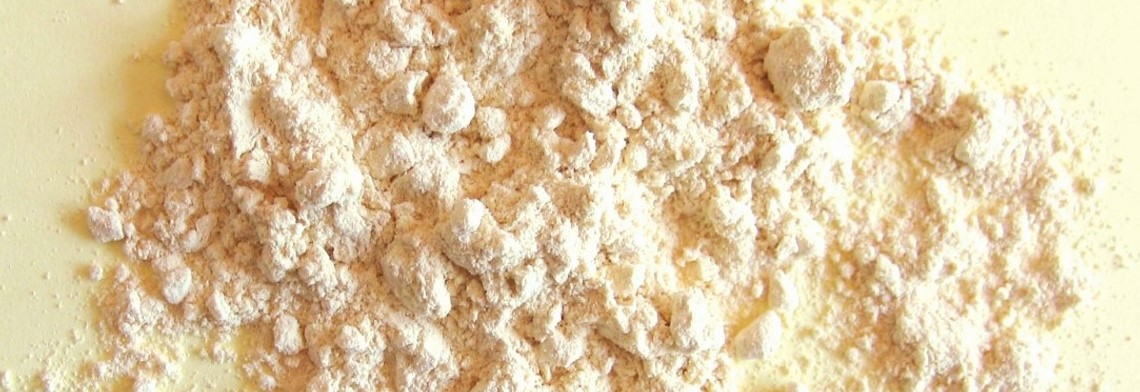 Lecithin Pulver, GMO-frei