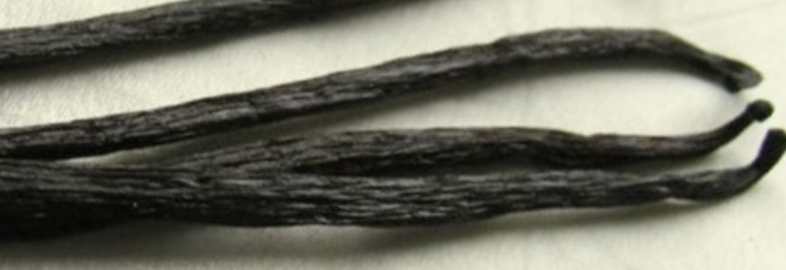 Parfümöl Vanilla