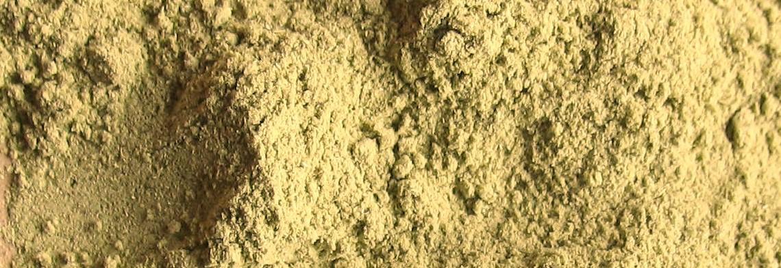 Weizengras BIO gemahlen